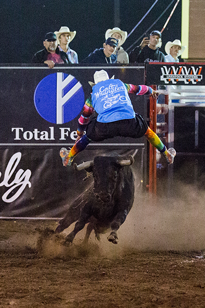 Colt Oder makes a jump over his bull Friday during the Bullfighters Only stop in Fortuna, Calif. (PHOTO BY CAROL LINES)