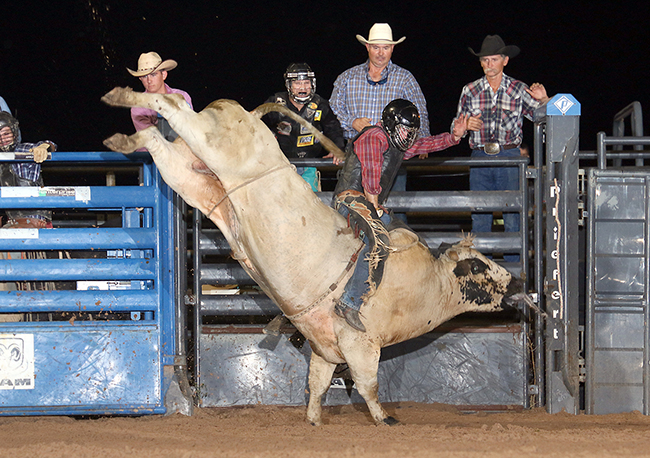 Twisted Rodeo