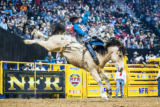 TwisTed Rodeo | Larsen finds the right fix for NFR