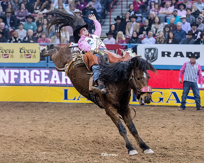 Richmond Champion will return to the National Finals Rodeo for the fourth time in his young career. He has had a terrific 2018 season, capitalized by his engagement to his fiance, Paige. (PHOTO BY TODD BREWER)