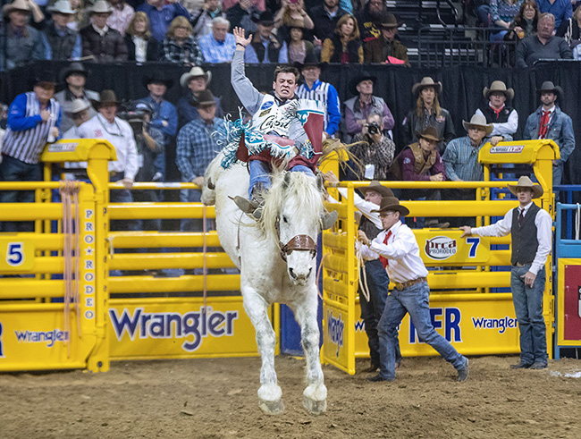Tim O'Connell knows how to handle his business, which is riding bucking horses. He's the two-time reigning world champion bareback rider heading to his fifth National Finals Rodeo sitting No. 1 in the world standings. He is itching to win his third straight Montana Silversmiths gold buckle. (PHOTO BY TODD BREWER)