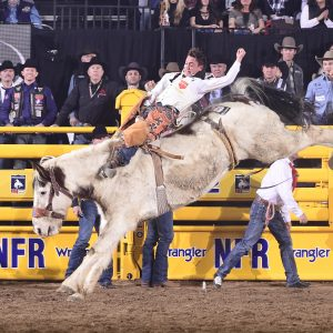 Clayton Biglow rides J Bar J's Painted Bunny for 86.5 points on Friday night to place for the sixth time at the National Finals Rodeo. (PRCA PRORODEO PHOTO BY JAMES PHIFER)