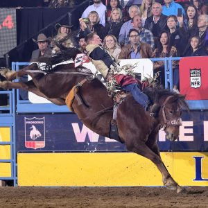 Ty Breuer won nearly $90,000 while competing at just 27 rodeos in 2019 to qualify for the National Finals Rodeo for the fifth time in his career. (PHOTO BY JAMES PHIFER)