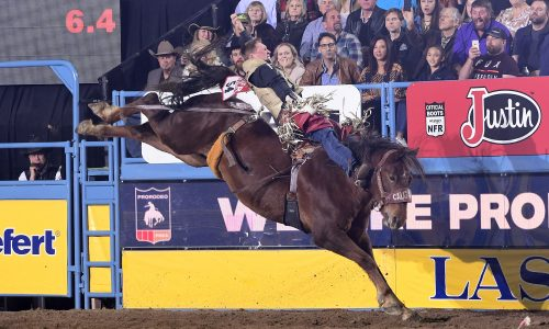 Ty Breuer rides Calgary Stampede's Tootsie Roll for 88 points Tuesday to win the sixth round at the National Finals Rodeo. (PRCA PRORODEO PHOTO BY JAMES PHIFER)