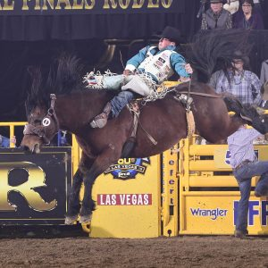 Richmond Champion rides Cervi's Control Freak for 87.5 points to finish in a tie for second place in Friday's ninth round of the National Finals Rodeo. (PRCA PRORODEO PHOTO BY JAMES PHIFER)