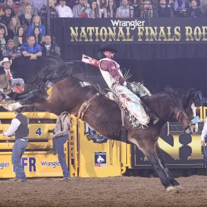 Richmond Champion finishes off the National Finals Rodeo by riding Pickett Pro Rodeo's Faded Night for 88.5 points to finish in a tie for second place in the 10th round. (PRCA PRORODEO PHOTO BY JAMES PHIFER)