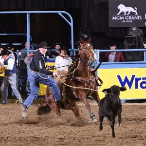 Ryan Jarrett makes his way to his calf Friday night en route to an 8.7-second run in the ninth round of the National Finals Rodeo. He placed for the fifth straight night. (PRCA PRORODEO PHOTO BY JAMES PHIFER)