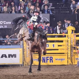 Tim O'Connell rides Cervi's Ain't No Angel for 90 points to win Friday's ninth round of the National Finals Rodeo. With his earnings, he moved back to the No. 1 spot in the standings with one night remaining. (PRCA PHOTO BY JAMES PHIFER)