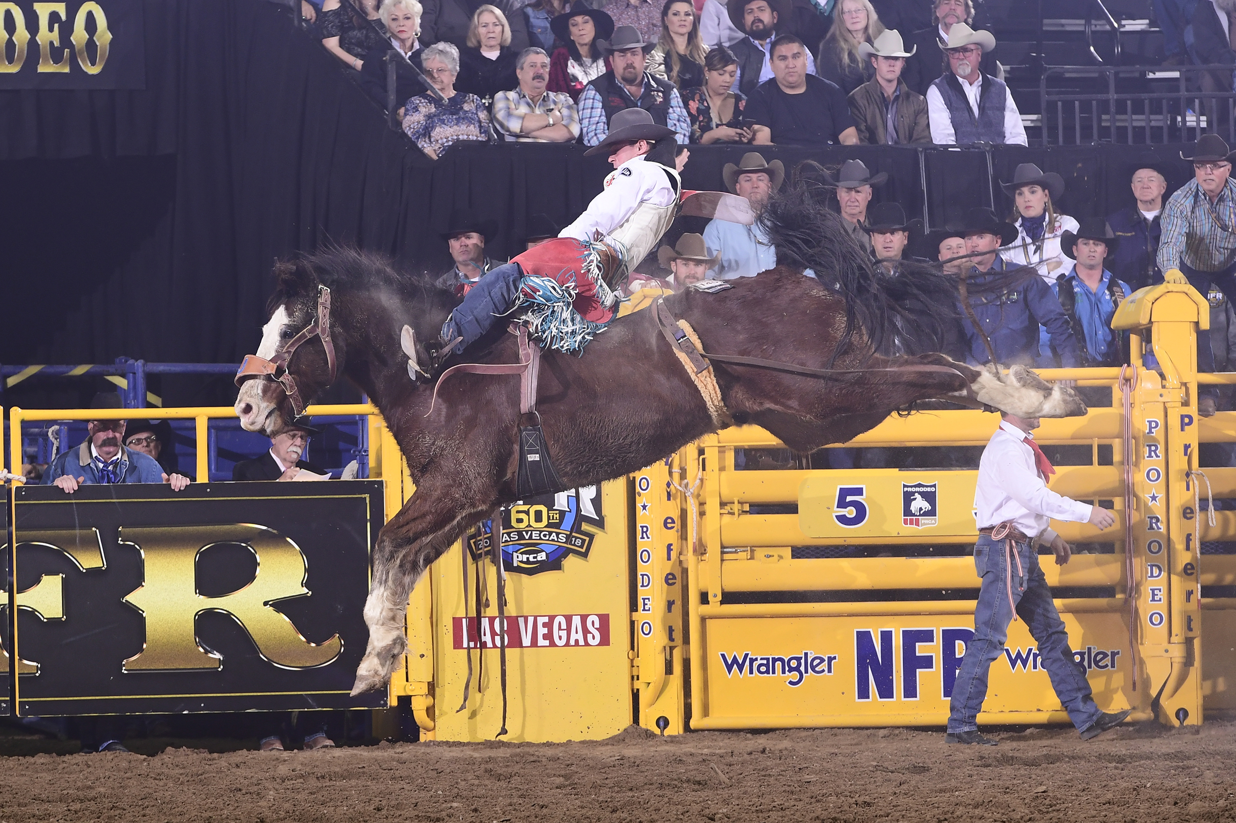 Tim O'Connell went on a tear the final three months and 10 days of the 2019 regular season to earn $100,000 and qualify for the National Finals Rodeo. He will battle for a fourth straight world title at this year's NFR, set for Dec. 5-14. (PHOTO BY JAMES PHIFER)