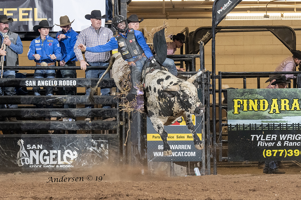 Stetson Wright rides United Pro Rodeo's Happy Days for 89 points to share the bull riding lead at the San Angelo Stock Show and Rodeo. (PHOTO BY RIC ANDERSEN)