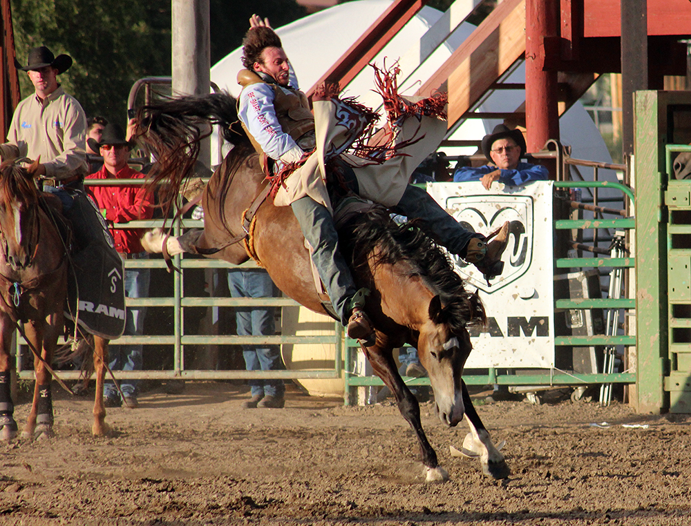 Nevada cowboy Cody Kiser is one of many contestants from all over the country who will likely be in Gunnison to chase the bigger purse available during this year's Cattlemen's Days PRCA Rodeo.