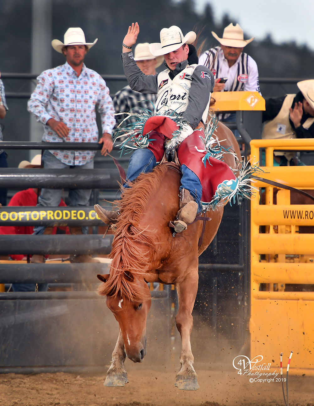Tim O'Connell rides Cervi's San Luis for 87 points to take the bareback riding lead at the Rooftop Rodeo. (PHOTO BY GREG WESTFALL)