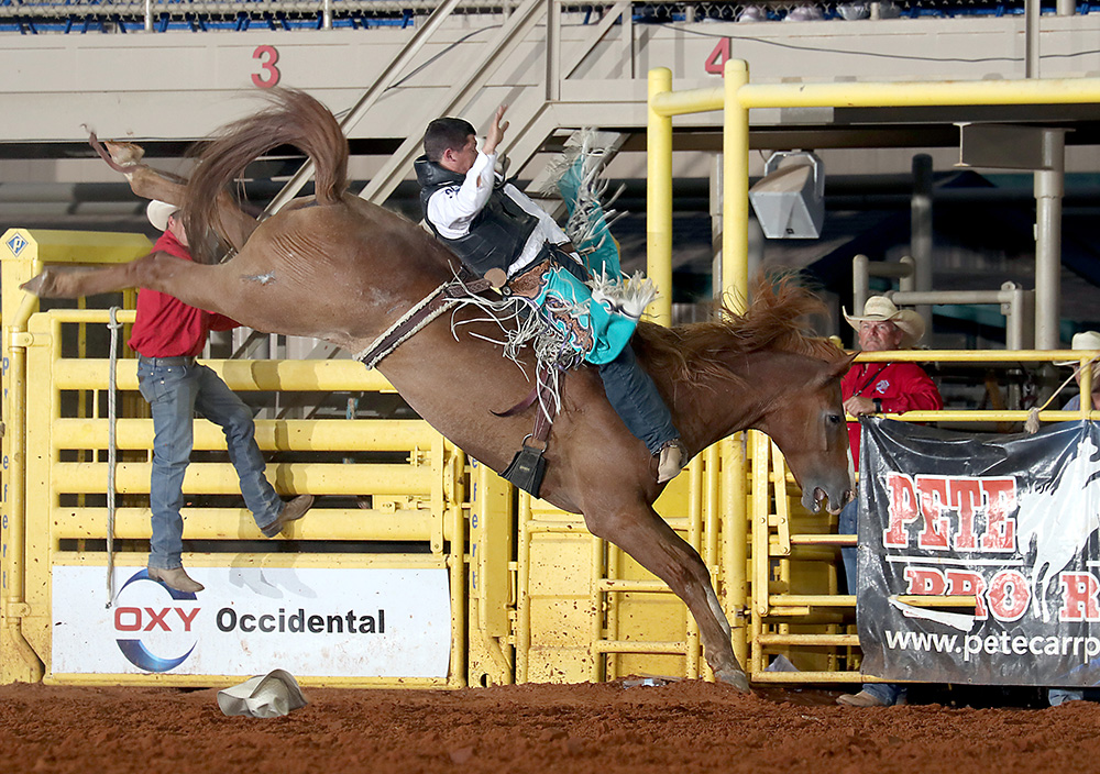 Tanner Aus rides Pete Carr's Good Time Charlie for 90 points to take the bareback riding lead at the Lea County Fair and Rodeo. (PHOTO BY PEGGY GANDER)