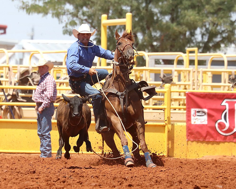 Tie-down roper Chance Oftedahl has the aggregate lead after roping two calves in a cumulative time of 18.1 seconds. Oftedahl is riding a nice run into this week of rodeos, and his times in Lovington give the Minnesota cowboy a chance to cash in already. (PHOTO BY PEGGY GANDER)