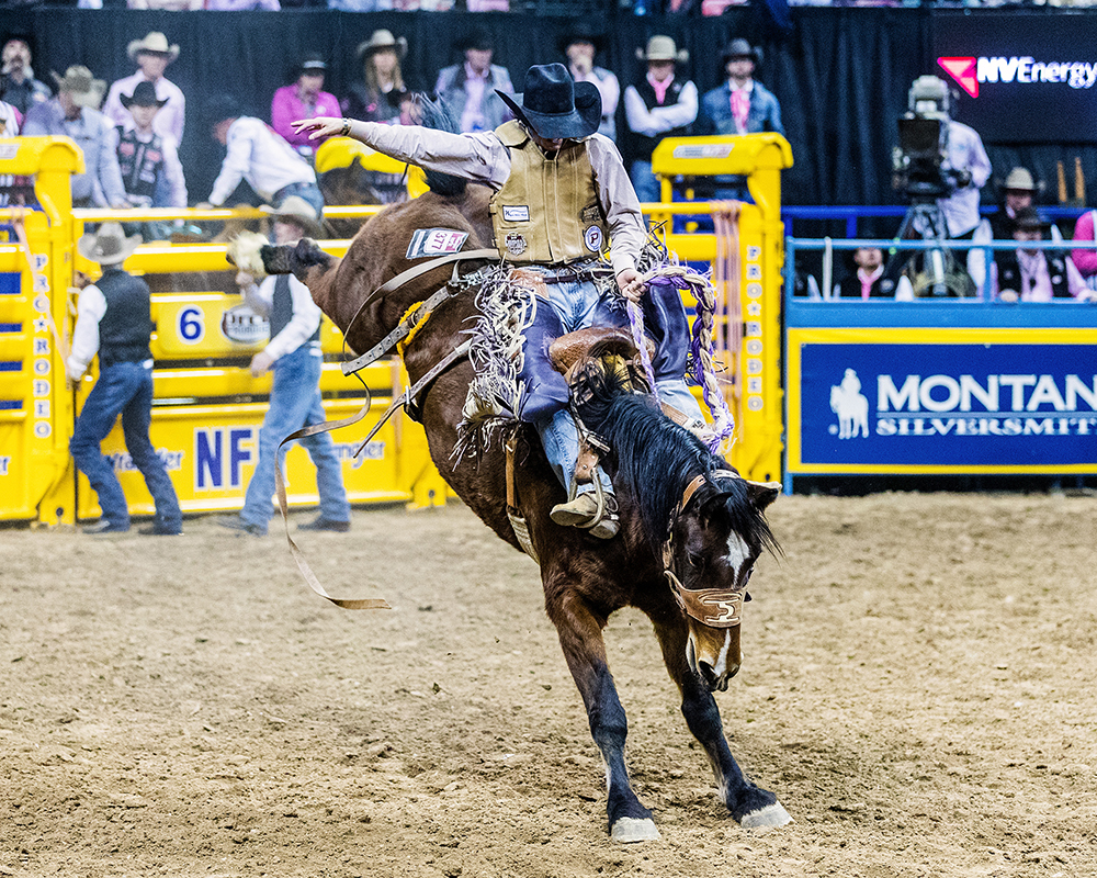 Hardy Braden heads into the final few weeks of the Prairie Circuit standings as the No. 1 man in the saddle bronc riding standings. (PHOTO BY TODD BREWER)