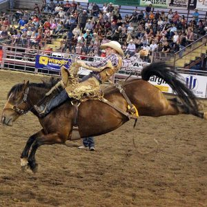 Rookie saddle bronc rider Tegan Smith rides Frontier Rodeo's Bordertown for 87 points Wednesday to take the lead at Dodge City Roundup Rodeo. a