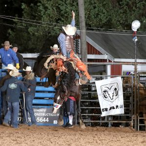 Parker Kempfer rides Rocky Mountain Rodeo's Cimarron for 81.5 points Friday night to tie for the saddle bronc riding lead at the Austin County Fair's Rodeo. (PHOTO BY PEGGY GANDER)