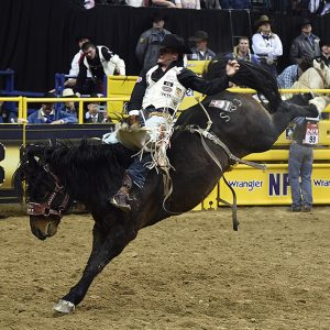 Richmond Champion returns to the National Finals Rodeo for the fifth time in his young career. (PHOT BY ROBBY FREEMAN)