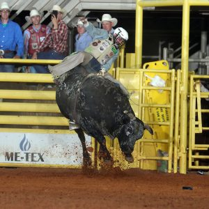 Jordan Spears will return to the National Finals Rodeo for the fourth time in his young career, and he heads to Las Vegas next week ninth in the world standings. (PHOTO BY PEGGY GANDER)