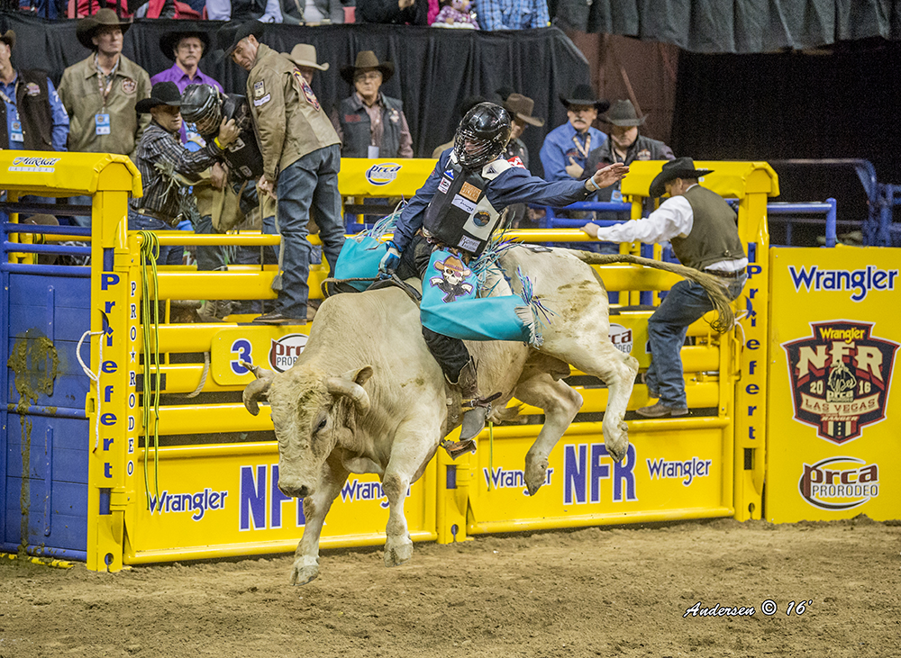 Garrett Smith missed the National Finals Rodeo a year ago, and he's excited to be making it back to ProRodeo's grand championship, which begins next week. (PHOTO BY RIC ANDERSEN)