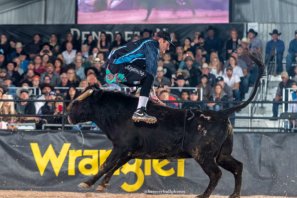 Chase Blythe was 85.5 points during his bullfight Sunday afternoon to win the Bullfighters Only Qualifier Seeding Round. He will face Anthony Morse in the Las Vegas Championship Quarterfinal Round. (PHOTO BY TODD BREWER)