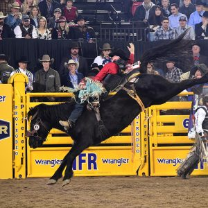 Tanner Aus rides Cervi's William Wallace for 88.5 points to finish in a tie for third place in Friday's ninth round of the National Finals Rodeo. (PRCA PRORODEO PHOTO BY JAMES PHIFER)