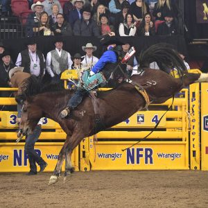 Tanner Aus rides Pickett Pro Rodeo's Top Egyptian for 88.5 points to place for the sixth time at the National Finals Rodeo. He earned just shy of $92,000 in Vegas over 10 days. (PRCA PRORODEO PHOTO BY JAMES PHIFER)