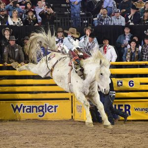 Clayton Biglow took advantage of his reride on Wayne Vold Rodeo's Mucho Dinero to finish in a tie for third place in Friday's ninth round of the National Finals Rodeo. (PRCA PRORODEO PHOTO BY JAMES PHIFER)