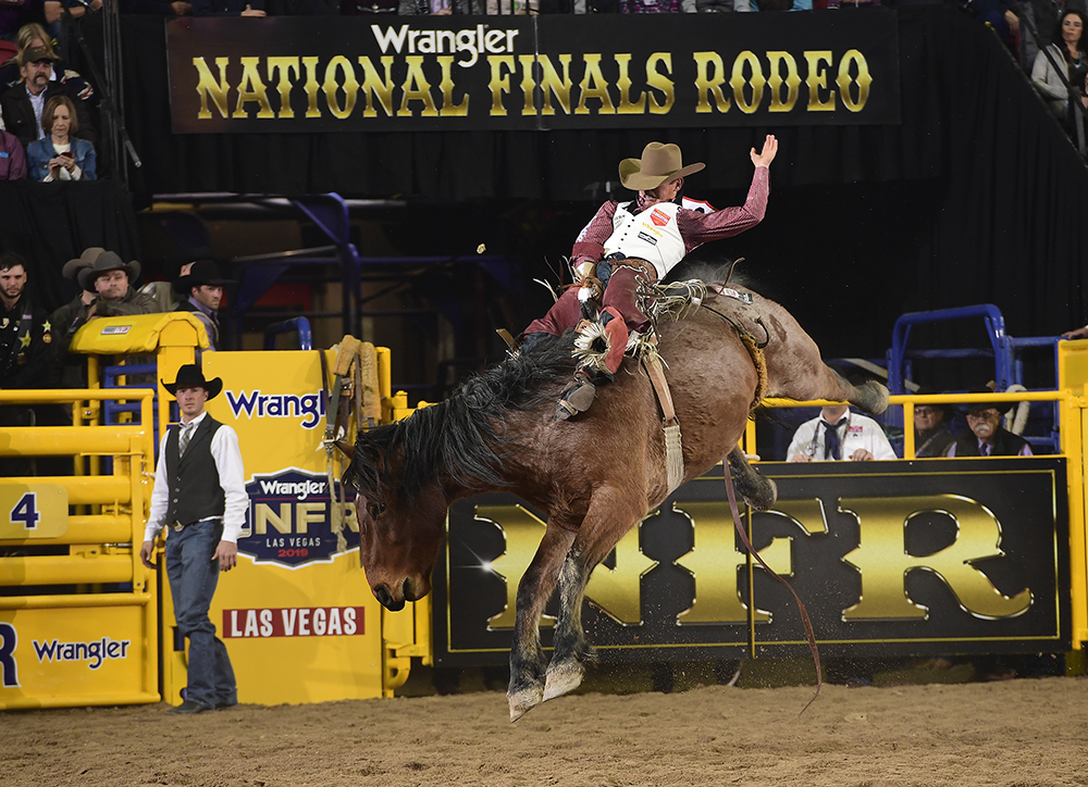 Clayton Biglow rides Cervi's Ainit No Angel for 90.5 points to finish second in the opening round of the 2019 National Finals Rodeo. (PRCA PHOTO BY JAMES PHIFER)
