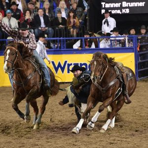Tanner Brunner grabs ahold of his steer en route to a 4.7-second run, which earned him a fifth-place check in the eighth round of the National Finals Rodeo. (PRCA PRORODEO BY JAMES PHIFER)