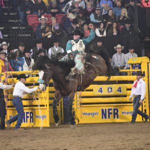 Richmond Champion rides Pickett Pro Rodeo's Faded Night to finish off his National Finals Rodeo third in the average. he earned nearly $110,000 in 10 days. (PRCA PRORODEO PHOTO BY JAMES PHIFER)