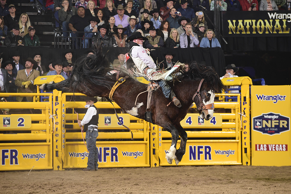 Richmond Champion has his sights set on the world championship as he enters his sixth National Finals Rodeo. (PRCA PRORODEO PHOTO BY JAMES PHIFER)