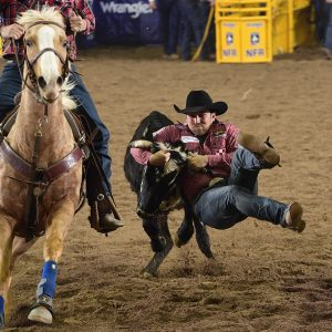 Riley Duvall finished second in the National Finals Rodeo's steer wrestling average and left Las Vegas with more than $80,000 in earnings. (PRCA PRORODEO PHOTO BY JAMES PHIFER)