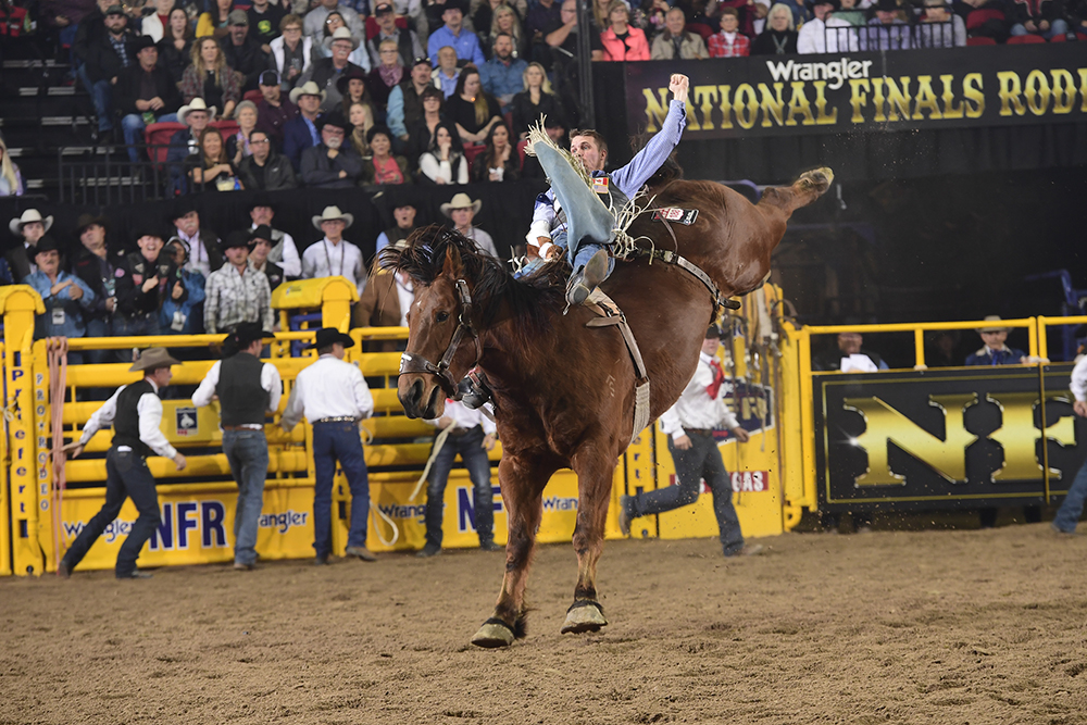 Orin Larsen finished fourth in Saturday's 10th round to close out a fantastic National Finals Rodeo, where he won nearly $123,000 in 10 days. He is the 2019 reserve world champion bareback rider. (PRCA PRORODEO PHOTO BY JAMES PHIFER)