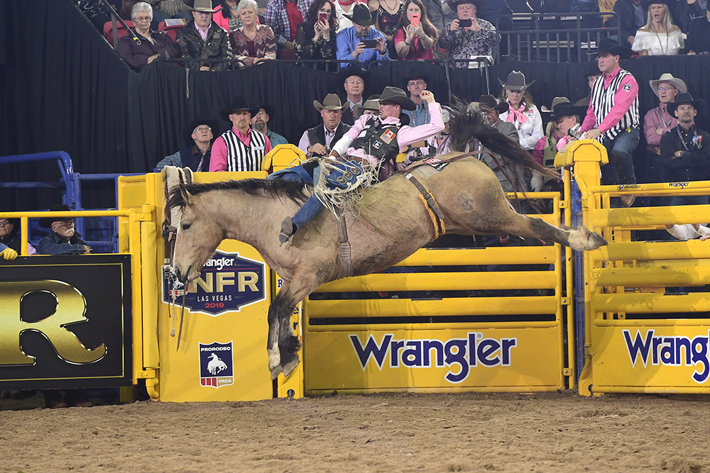 Orin Larsen rides Frontier Rodeo's Gun Fire for 91 points to finish third in Monday's fifth round of the National Finals Rodeo. (PRCA PRORODEO PHOTO BY JAMES PHIFER)