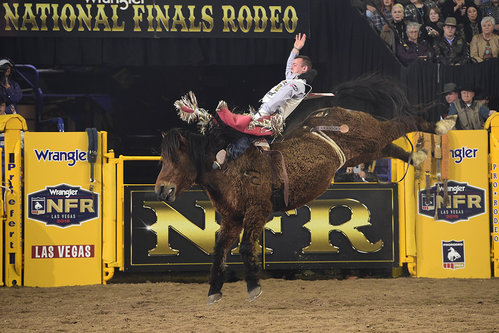 Tim O'Connell rides Pete Carr's Scarlet's Web for 88 points to finish fourth in Tuesday's sixth round of the National Finals Rodeo. (PRCA PRORODEO PHOTO BY JAMES PHIFER)