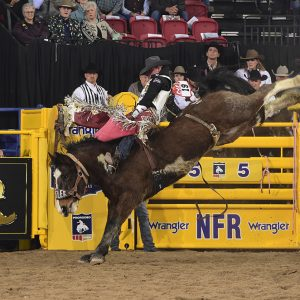 Tim O'Connell rides Kesler Rodeo's Uptown Flash for 89.5 points to finish as the runner-up in Friday's second go-round of the National Finals Rodeo. (PRCA PRORODEO PHOTO BY JAMES PHIFER)