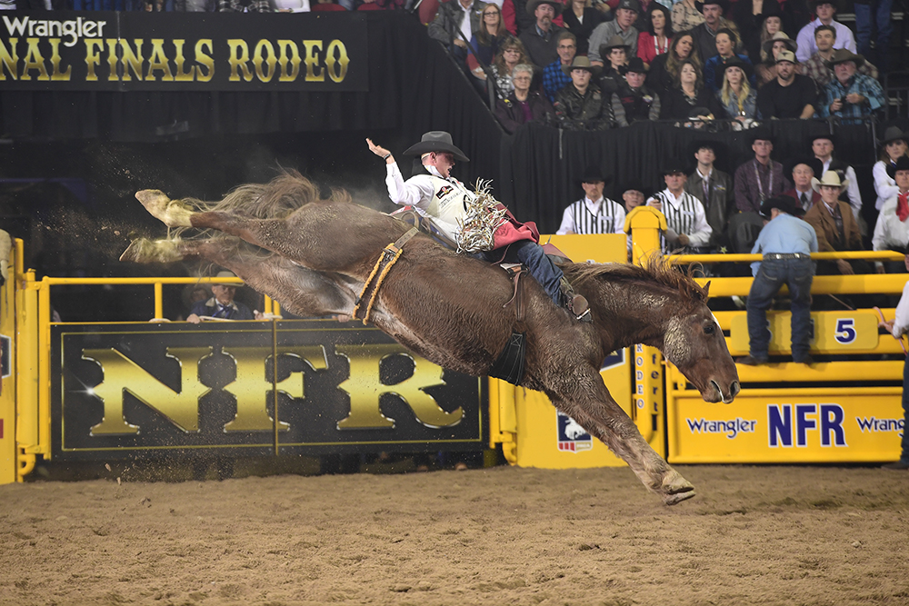 Seven-time National Finals Rodeo qualifier Tim O'Connell will battle for his fourth bareback riding world title in five years at this year's finale. (PRCA PRORODEO PHOTO BY JAMES PHIFER)