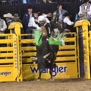 Jordan Spears rides Powder River Rodeo's Strange Cargo for 89.5 points to place at the National Finals Rodeo for the third time this week. (PRCA PRORODEO PHOTO BY JAMES PHIFER)