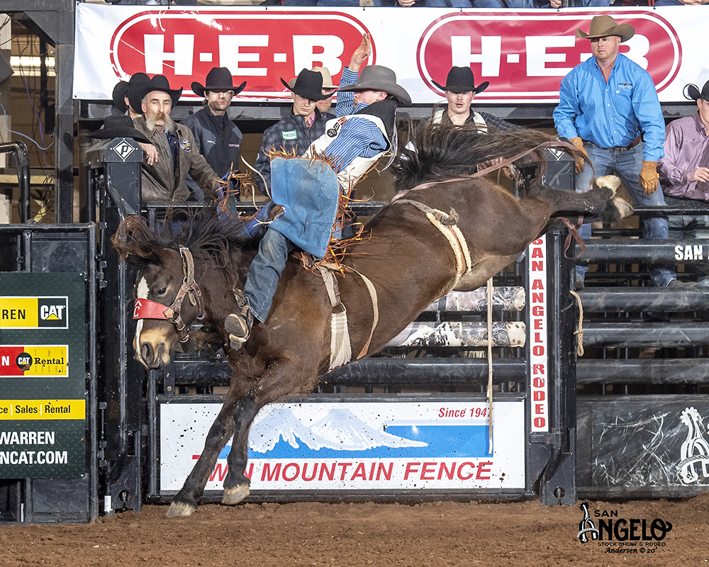 Canadian Kody Lamb rides Pete Carr's Hometown Girl for 88 points Thursday night to take the early lead at the San Angelo Stock Show and Rodeo. (PHOTO BY RIC ANDERSEN)