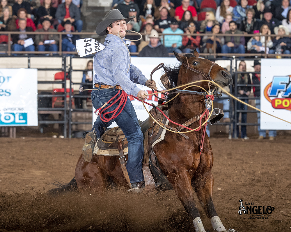 Ty Harris dismounts his horse en route to an 8.8-second run during Friday's second performance of his hometown San Angelo Stock Show and Rodeo. He has roped and tied two calves in a cumulative time of 17.0 seconds to lead tie-down roping. (PHOTO BY RIC ANDERSEN)