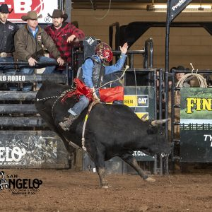 Matt Palmer rides Lancaster & Jones Pro Rodeo's Warning Signs for 81 points Wednesday at the San Angelo Stock Show and Rodeo. (PHOTO BY RIC ANDERSEN)