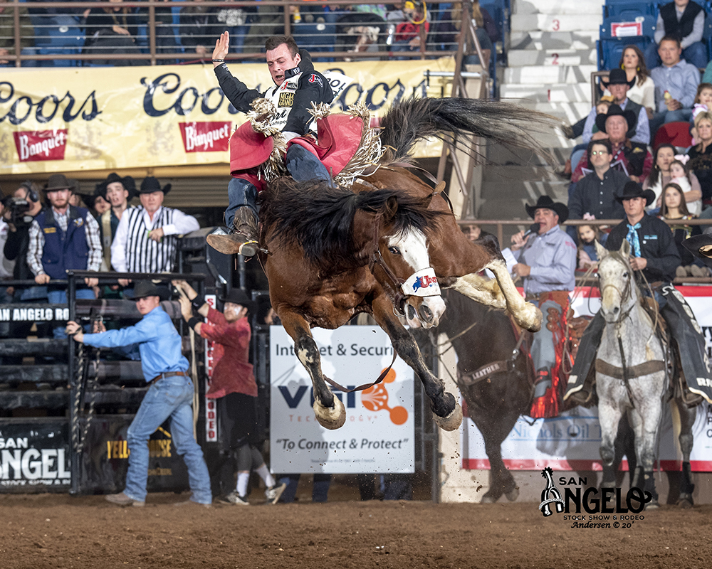 Three-time world champion Tim O'Connell rides United Pro Rodeo's Pow Wow Rocks for 86 points Friday night to move into second place in bareback riding at the San Angelo Stock Show and Rodeo. (PHOTO BY RIC ANDERSEN)