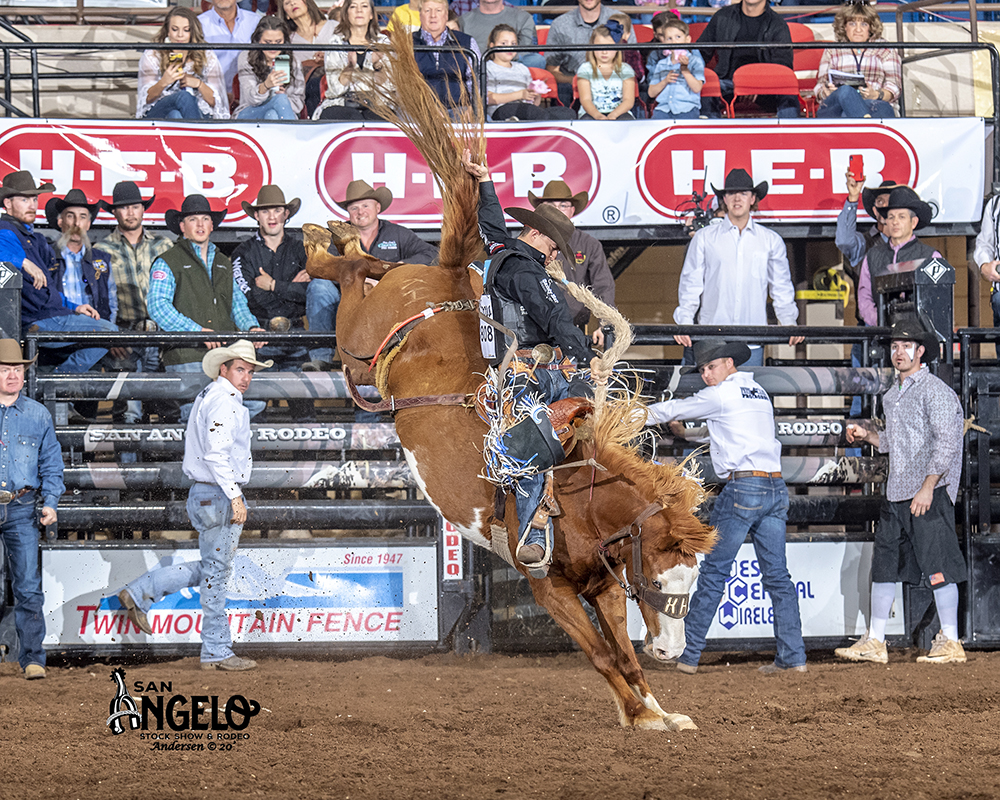 Two-time world champion Zeke Thurston rides Hampton Pro Rodeo's Rising Tide for 90 points Saturday to take the saddle bronc riding lead at the San Angelo Stock Show and Rodeo. (PHOTO BY RIC ANDERSEN)