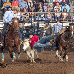 Matt Reeves transitions to his steer during a 3.9-second run Sunday to take a share of the second-round lead and atop the overall lead by himself at the San Angelo Stock Show and Rodeo. (PHOTO BY RIC ANDERSEN)