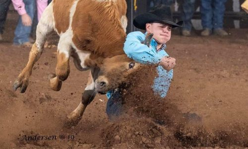 Bridger Anderson has won the Central Plains Region bulldogging title for the second straight year, including this year's shortened season because of COVID-19. (PHOTO BY RIC ANDERSEN, courtesy of Bridger Anderson)