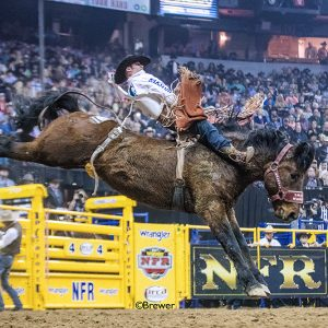 Mason Clements rides Calgary Stampede's Shadow Warrior during the 2017 National Finals Rodeo. Clements was off to a hot start, winning both San Antonio and Denver, but the season is on hold due to the COVID-19 coronavirus pandemic. Still, he's found the silver lining. (PHOTO BY TODD BREWER)