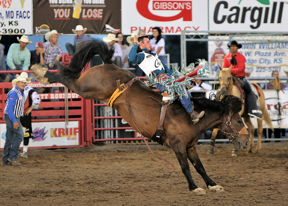 World champion bareback rider Tim O'Connell competes at a recent Dodge City Roundup Rodeo. O'Connell accounts for three of the more than 100 gold buckles that will be featured at this year's rodeo. (PHOTO BY DAVID SEYMORE)