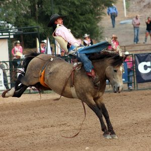 Tray Chambliss III rides Frontier Rodeo's Night Fist for 87 points to take the bareback riding lead during Friday's first performance of the Guymon Pioneer Days Rodeo.