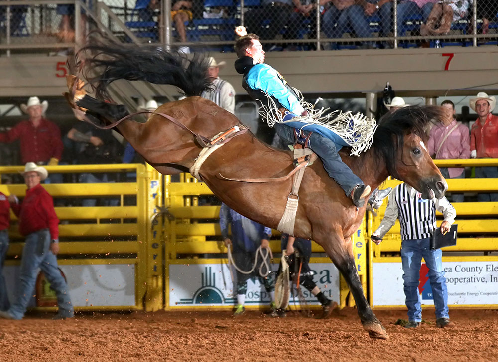Orin Larsen was one of many top cowboys to make a big score on Pete Carr's Scarlet's Web, including this 90-point ride in Lovington, New Mexico, three seasons ago. She died at age 19 after 13 trips to the National Finals Rodeo and six NFR go-round victories. (PHOTO BY PEGGY GANDER)